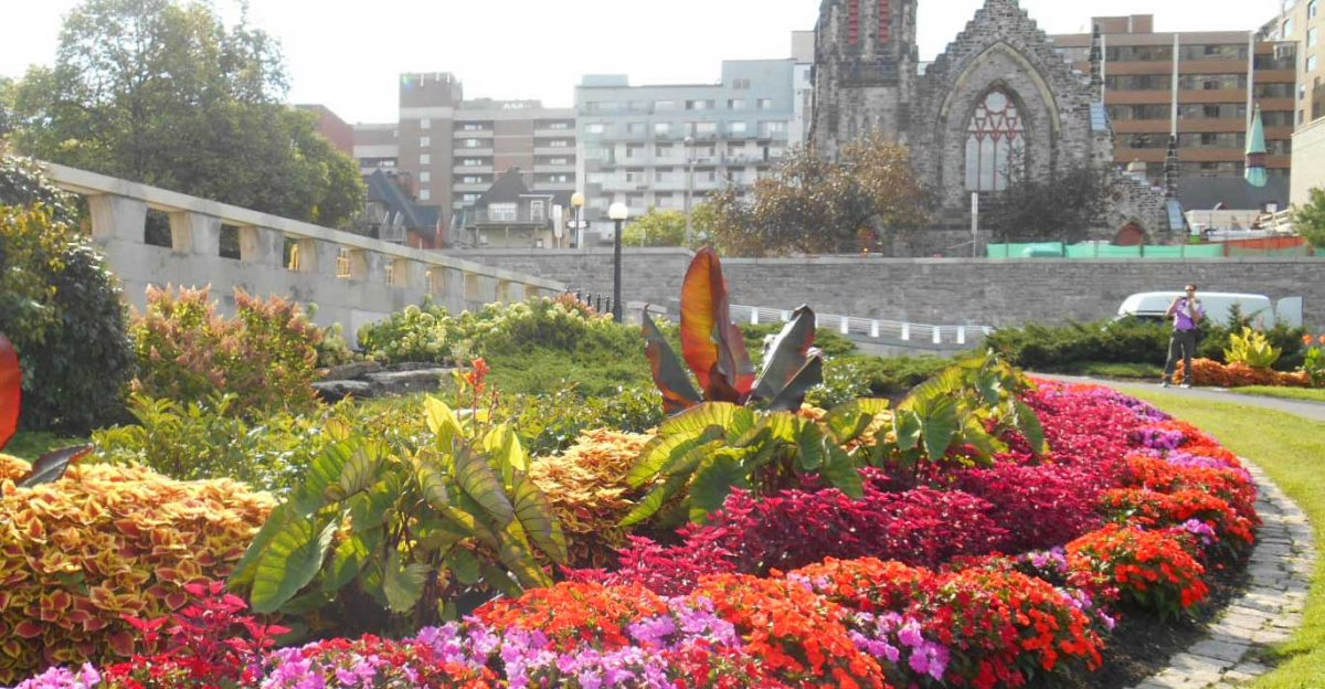 Feature gardens garden promenade for Courtyard landscaping ottawa